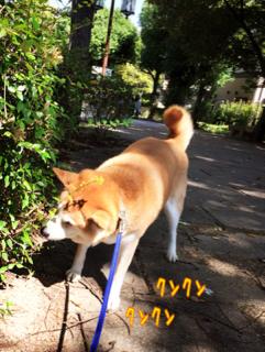 image-20151004230814.png