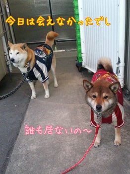 2014-02-20-18-39-22_deco.jpg