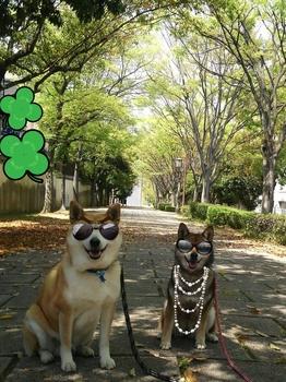 2014-04-20-00-03-52_deco.jpg