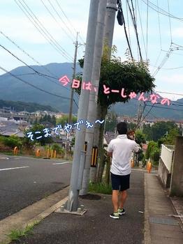 2014-07-12-17-04-51_deco.jpg