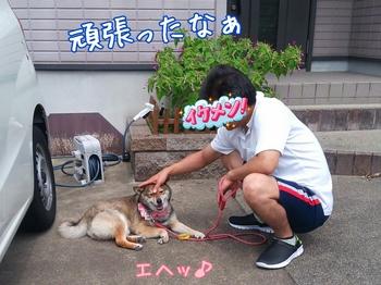 2014-07-12-17-28-29_deco.jpg