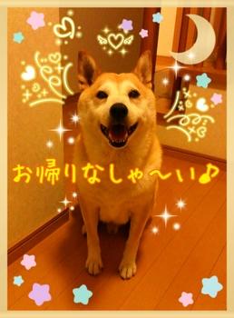 2014-07-26-09-36-52_deco.jpg