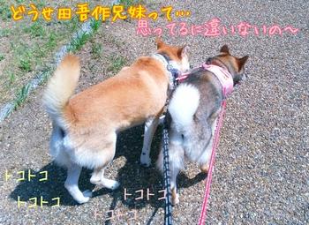 2014-08-04-10-47-28_deco.jpg