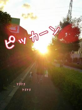 2014-09-17-11-22-19_deco.jpg