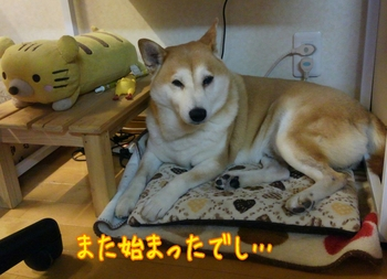2014-09-24-11-11-20_deco.jpg